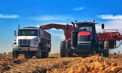 Bart Wattenbarger Farmer Garth Van Orden Grower Agriculture Economics Commerce Yield Travis Blacker Harvest
