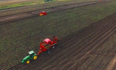 влажности на картофельном поле