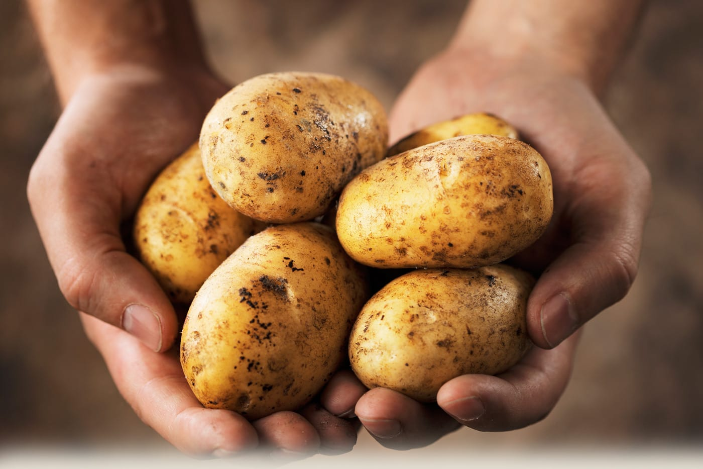 Glyphosate on Potatoes