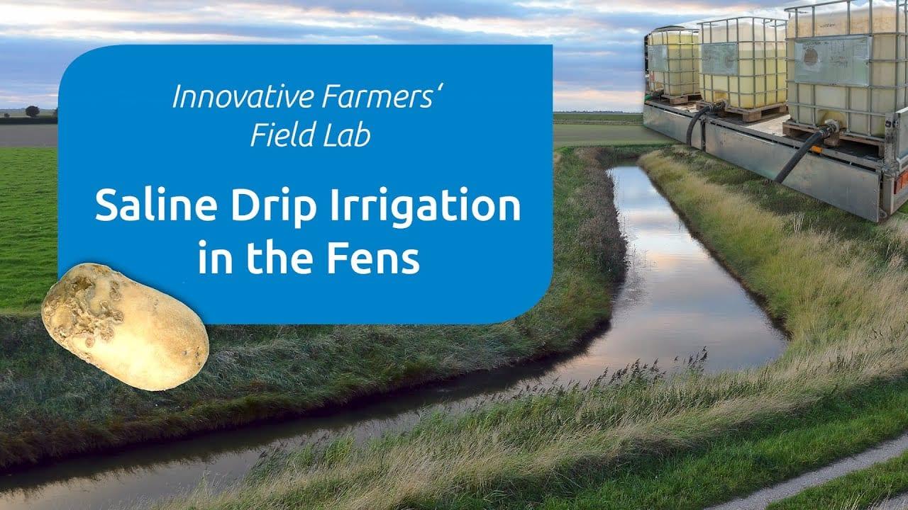 Innovative farmers soline drip 1