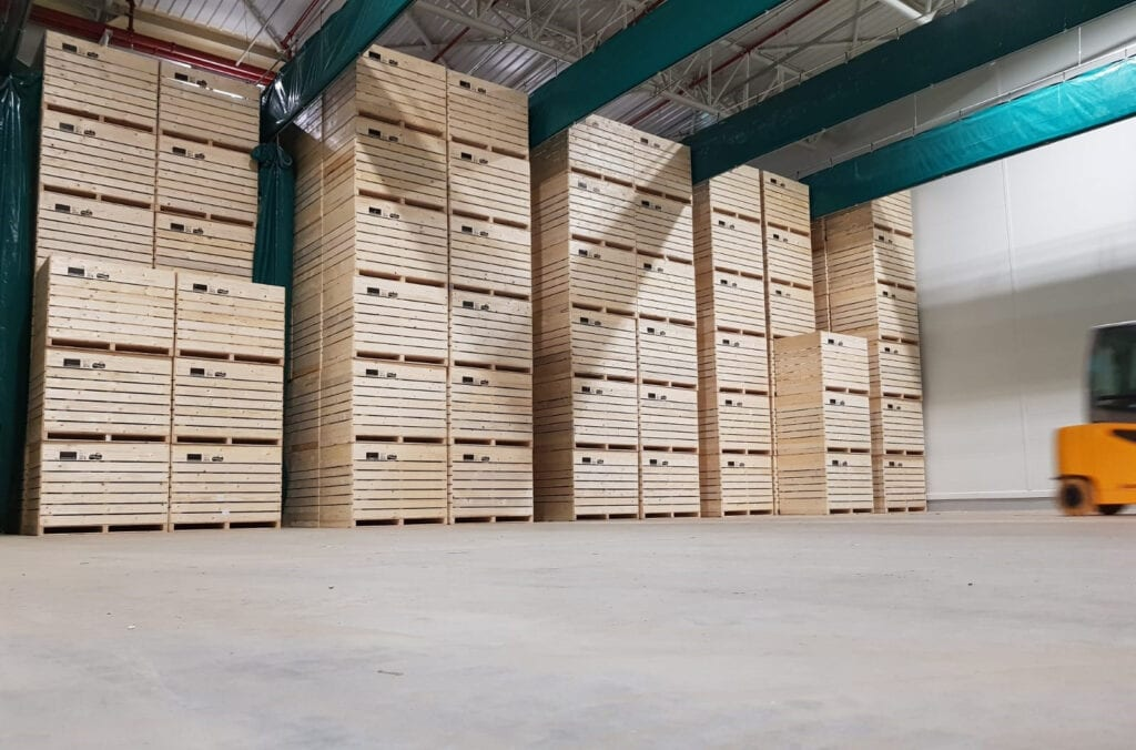 Inter Agra Wooden Boxes for Vegetables