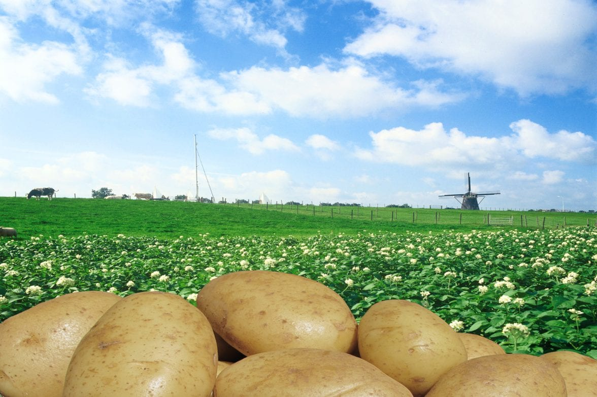 North Western European Potato Growers NEPG