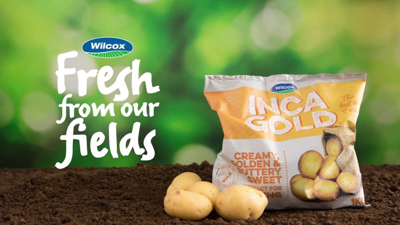 Wilcox Fresh potato