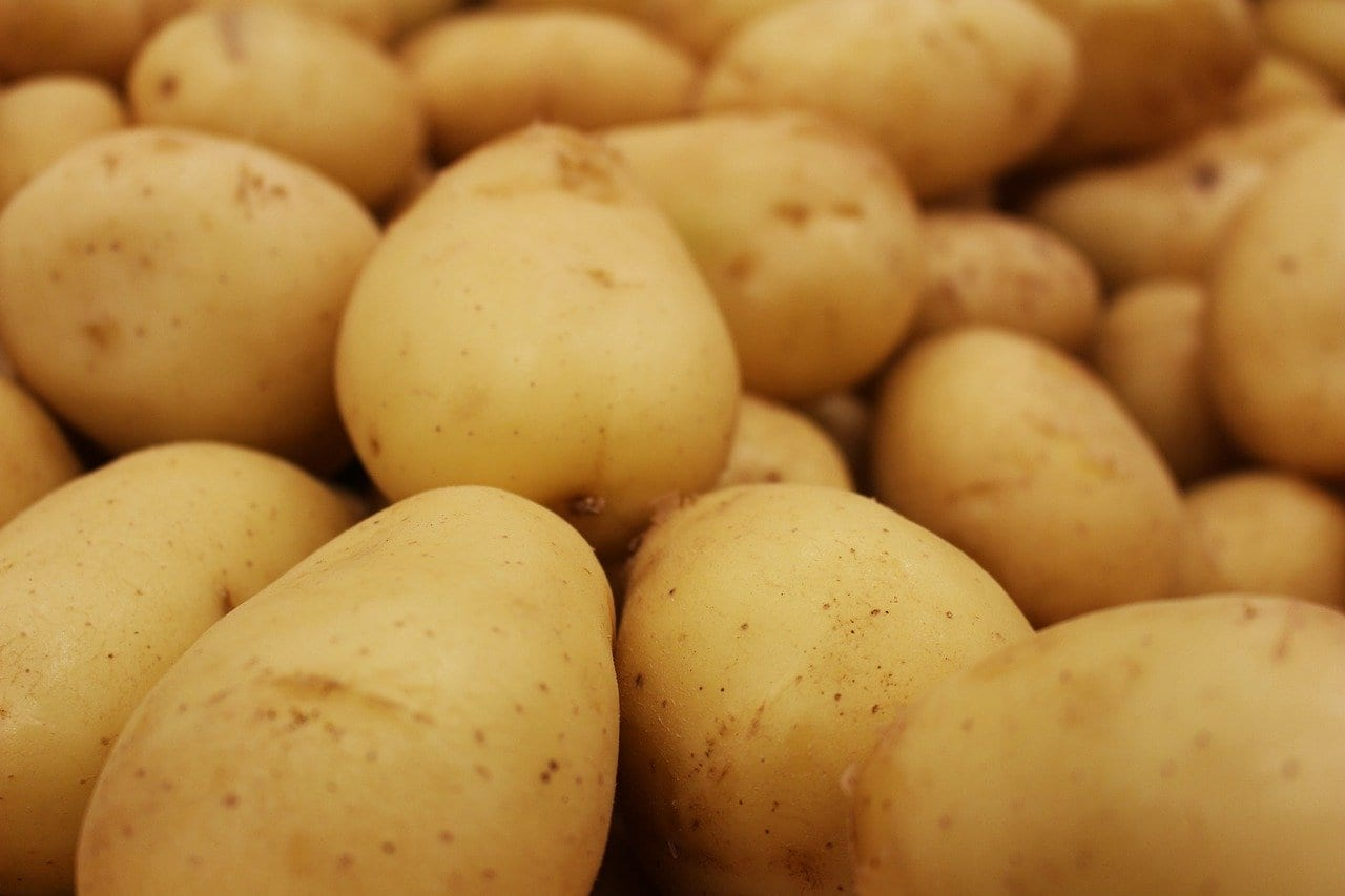 potato 5318958 1280