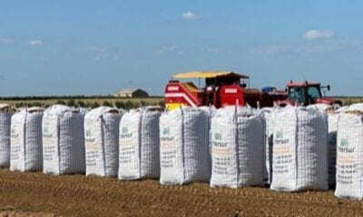 Controls 3,000 hectares of production in Spain and France and already reaches 100,000 tonnes per year