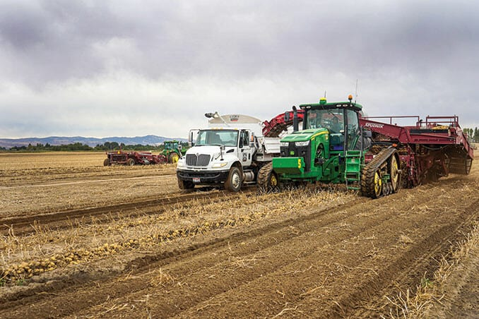 Good year for spuds in Idaho, marketers say