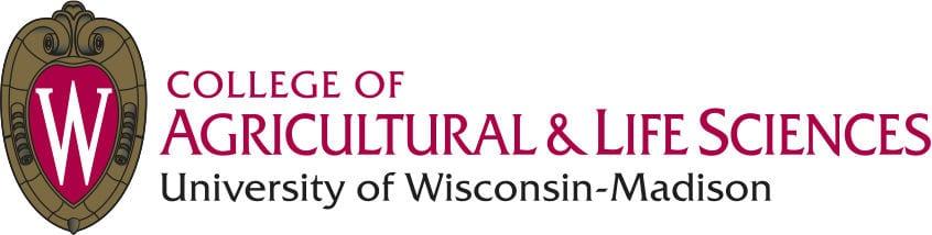 Potato imaging project targets fertilizer use
