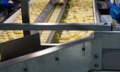 The Dutch potato processors processed 318,700 tonnes of potatoes in September to 146,600 tonnes of pre-baked product and 25,000 tonnes of other products. That's a slight plus compared to August.