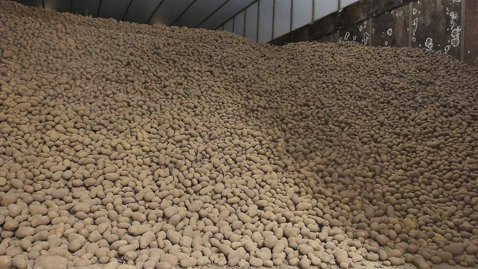 aardappels in bewaring s r. detail