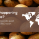potato scan 580x300 1 1024x530 1