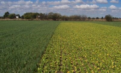 soilmanageme 1 1