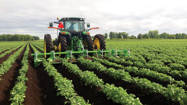 Cultivatorii europeni de cartofi salută studiul CE asupra NGT